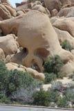 Primo piano della roccia del cranio in Joshua Tree National Park immagini stock libere da diritti