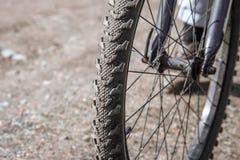 Primo piano della ruota di bicicletta contro lo sfondo di una strada non asfaltata Fotografie Stock Libere da Diritti