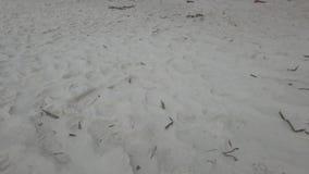Primo piano della sabbia della spiaggia video Vista aerea della sabbia, primo piano stock footage