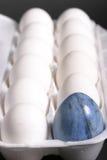 Primo piano della scatola insolita delle uova 3 Fotografia Stock