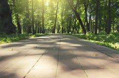 Primo piano della strada di pietra vuota delle mattonelle in parco immagini stock