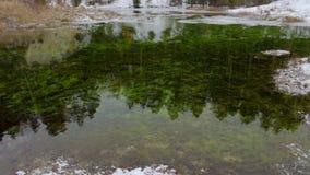 Primo piano della superficie del lago verde archivi video