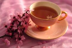 Primo piano della tazza e dei fiori rosa fotografia stock