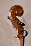 Primo piano della testa di un violoncello Immagine Stock