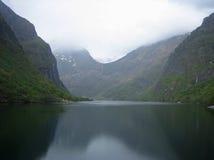 Primo piano della valle del fiordo in Norvegia Fotografia Stock Libera da Diritti