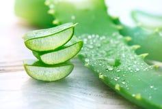 Primo piano della vera dell'aloe Cosmetici organici naturali affettati di rinnovamento di Aloevera, medicina alternativa Concetto Fotografia Stock Libera da Diritti
