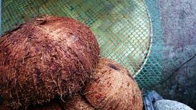 Primo piano delle bucce e delle coperture della noce di cocco Immagini Stock Libere da Diritti