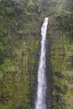Primo piano delle cadute di Waimoku, Maui, Hawai Fotografie Stock Libere da Diritti