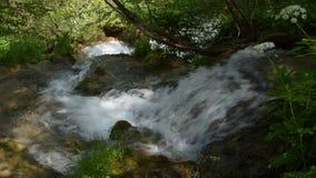 Primo piano delle cascate del fiume di Gostilje sulla montagna di Zlatibor stock footage