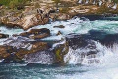 Primo piano delle cascate del Reno Immagini Stock