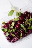 Primo piano delle ciliege succose fresche su fondo bianco, vista superiore Fotografia Stock