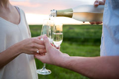 Primo piano delle coppie che mangiano champagne nel campo Immagini Stock
