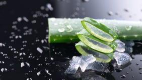 Primo piano delle fette di Vera dell'aloe Gel della foglia della pianta di Aloevera, cosmetici organici naturali di rinnovamento, fotografie stock