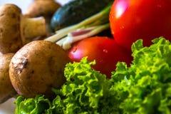 Primo piano delle foglie dell'insalata, dei pomodori e dei cetrioli freschi Fotografia Stock