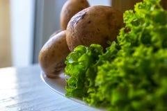 Primo piano delle foglie dell'insalata, dei pomodori e dei cetrioli freschi Fotografia Stock Libera da Diritti