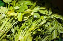 Primo piano delle foglie fresche del prezzemolo in supermercato Immagini Stock Libere da Diritti