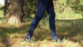 Primo piano delle gambe del ` una s della ragazza in jeans, camminante attraverso la foresta al tramonto video d archivio