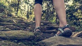 Primo piano delle gambe femminili che indossano la scala salente della foresta dei sandali Immagine Stock Libera da Diritti