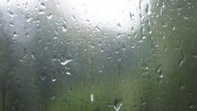Primo piano delle goccioline di acqua su vetro Gocce di pioggia sul vetro di finestra con il fondo della sfuocatura Albero e ciel archivi video