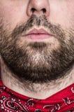 Primo piano delle labbra e della barba dell'uomo Fotografia Stock Libera da Diritti
