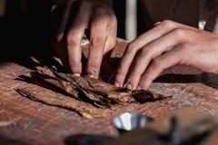 Primo piano delle mani avvolte dalle foglie asciutte del tabacco di vero sigaro cubano fotografie stock