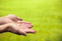Primo piano delle mani con fondo verde Fotografie Stock Libere da Diritti
