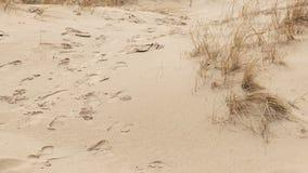 Primo piano delle orme nella sabbia stock footage