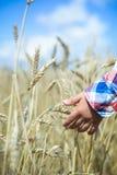 Primo piano delle punte commoventi del grano della mano del bambino dentro Fotografia Stock