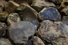 Primo piano delle rocce Fotografia Stock