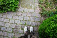 Primo piano delle scarpe della scarpa da tennis su una via cobbled fotografie stock libere da diritti