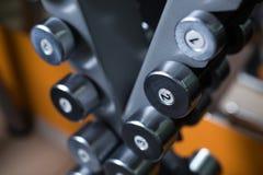 Primo piano delle teste di legno su un supporto Piccoli bilancieri su un fondo vago Attrezzatura della palestra Stile di vita fis immagine stock