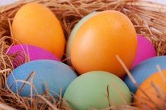 Primo piano delle uova di Pasqua variopinte nel nido Fotografia Stock