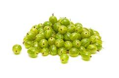 Primo piano delle uva spina su priorità bassa bianca Immagine Stock Libera da Diritti