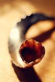 Primo piano dello shofar Fotografie Stock