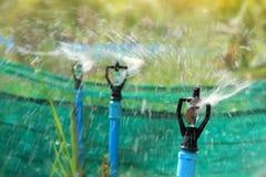 Primo piano dello spruzzatore dell'acqua, irrigazione del campo agricolo Fotografia Stock