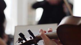 Primo piano dello strumento musicale in una mano del ` s dell'uomo su fondo vago stock footage