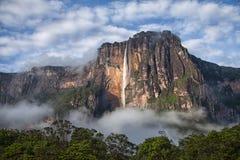Primo piano di Angel Falls - il più alta cascata su terra Immagine Stock