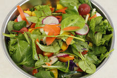 Primo piano di bella insalata Fotografia Stock Libera da Diritti