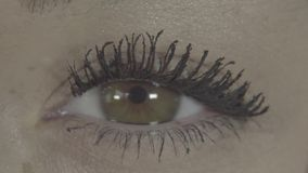 Primo piano di bello occhio della donna con trucco alla moda luminoso con le sferze lunghe il macro tiro dell'occhio del ` s dell video d archivio