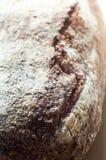 Primo piano di bello pane di lievito naturale del grano intero Fotografia Stock Libera da Diritti