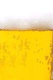 Primo piano di birra Fotografie Stock Libere da Diritti