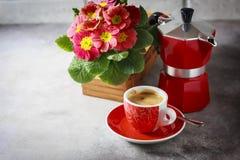 Primo piano di caffè, del moka-vaso e dei fiori caldi Immagini Stock Libere da Diritti
