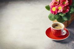 Primo piano di caffè, del moka-vaso e dei fiori caldi Immagini Stock