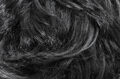 Primo piano di capelli neri Immagini Stock
