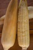 Primo piano di cereale bollito dolce Fotografia Stock