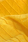 Primo piano di cotone organico giallo Immagini Stock