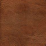 Struttura di cuoio di Brown Immagini Stock