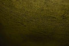Primo piano di cuoio strutturato di colore dell'oro fotografie stock