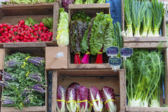 Primo piano di esposizione di verdure al mercato del ` s dell'agricoltore Immagini Stock