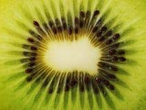 Primo piano di estremo del Kiwi Fotografia Stock Libera da Diritti